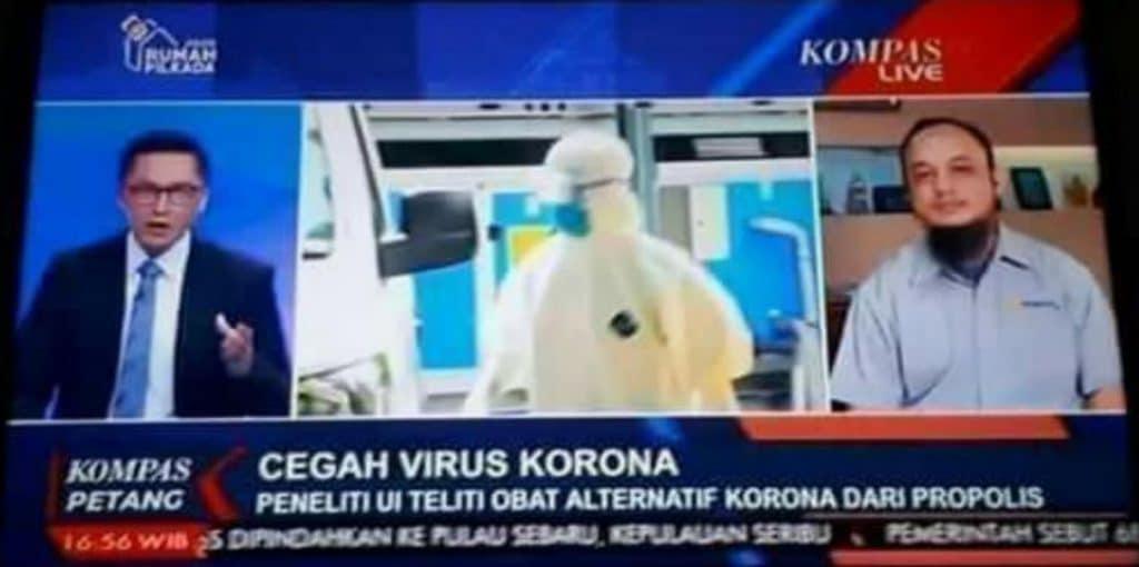 Propolis virus corona